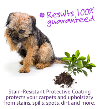 stain resistant protective