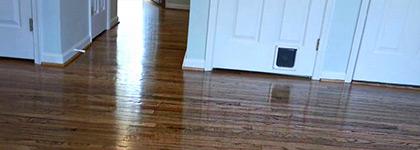 Hardwood Floor Buffing polished floor in minneapolis mn Hardwood Floors Refinishing Hardwood Floors Refinishing